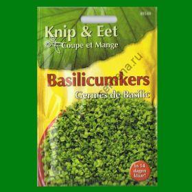 Проростки  БАЗИЛИК    (Basilicumkers)  20 грамм