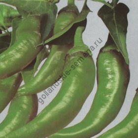 """Перец  сорт """"ФРИДЖИТЕЛЛО"""" (Friggitello peper)  300 семян"""