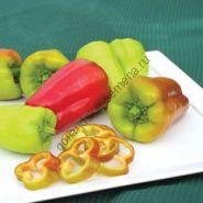 """Перец сладкий """"ЗДОРОВЫЙ"""" (Paprika Healthy) 25 семян"""
